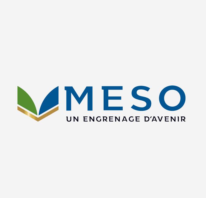 Meso - Compagnie minière